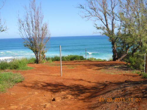 New Fenceposts in Alaloa