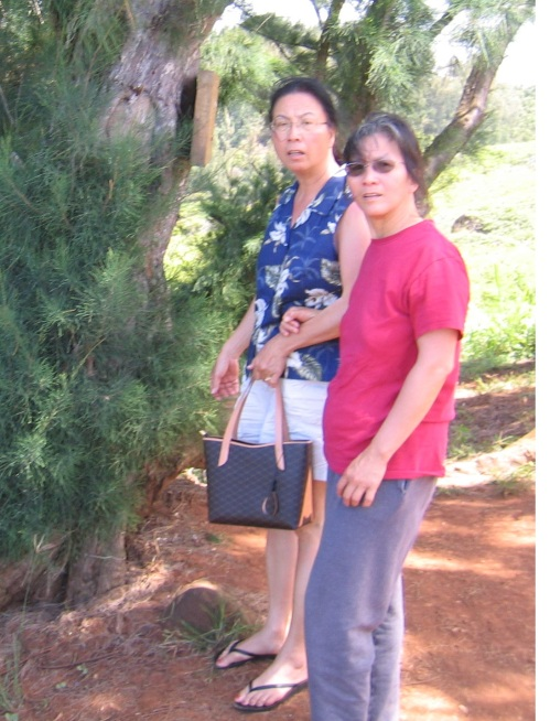 Mrs. Ngoc-Lan Pham (in red shirt) attempts to get to Larsen's Beach, one day after Paradise Ranch fences off the Alaloa!!!